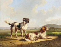 Two hunting dogs in a summer landscape