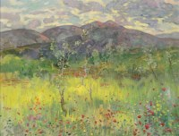 Poppy fields before the mountains
