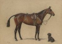 A saddled bay hunter and a terrier companion