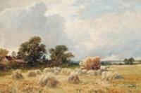 The oatfield