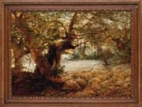 A stalker in the sunlit woods