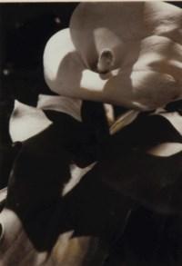 Untitled (Flower)