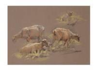 Sketch of sheep grazing; and a companion work
