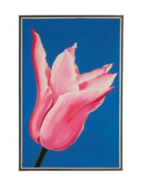 Pink Tulip; and a companion painting