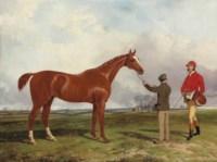 Colonel White's Kildare before the Kilrue Cup, Dublin, 1852