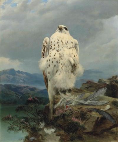 Attributed to Joseph Wolf (182