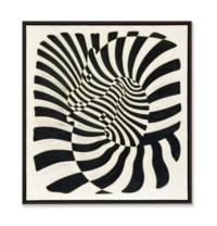 Zèbres (Zebras)